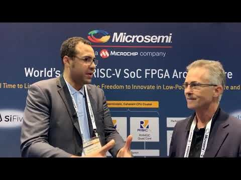 World's First RISC V based FPGA SoC Brings An Open Source Ecosystem With It