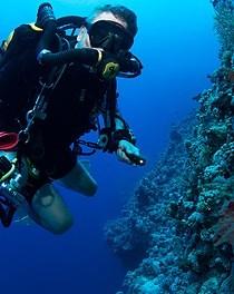 Gas Sensing Solutions CO2 sensor increases rebreather diver safety