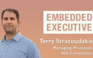 Embedded Executive: Terry Stratoudakis, Managing Principal, ALE Consultants