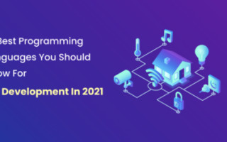 10 Programming Languages For IoT Development In 2021