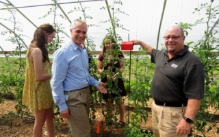 Using the IIoT to yield better tomatoes