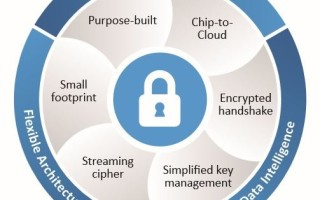 The Need for IoT Advanced Security: Why Do-It-Yourself Isn?t Enough for IoT