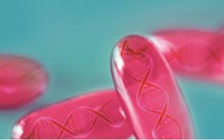 Accelerated Genomic Analysis.  Applying Massive Parallel Computing to Genomics Secondary Analysis