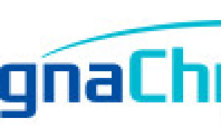 MagnaChip Releases New DDIC Products